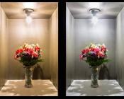 E27 LED Decorative Bulb - 9W Blunt Tip Candle Shape: Warm White vs Cool White