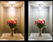 E27 LED Bulb - 13W: Warm White vs Cool White