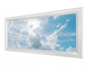 LED Skylight - 1x2 Dimmable Even-Glow® LED Panel Light - Sun Beams