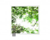 Tunable White LED Skylight w/ Forest Boughs SkyLens® - 2x2 Dimmable LED Panel Light - Drop Ceiling Recessed Mount