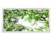LED Skylight w/ Forest Boughs Skylens® - 2x4 Dimmable LED Panel Light - Flush Mount/Drop Ceiling Recessed Mount