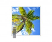Tunable White LED Skylight w/ Palm Trees SkyLens® - 2x2 Dimmable LED Panel Light - Drop Ceiling Recessed Mount