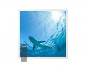 Tunable White LED Skylight w/ Lone Shark SkyLens® - 2x2 - Dimmable - Drop Ceiling Recessed Mount