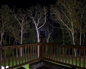 100 Watt High Power LED Flood Light Fixture - 12,000 Lumens: Placed on Banister Post Aimed at Tree Line 150 Feet Away Showing Beam Distance and Spread on Treetops