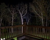 80 Watt High Power LED Flood Light Fixture - 9,300 Lumens: Placed on Banister Post Aimed at Tree Line 150 Feet Away Showing Beam Distance and Spread on Treetops
