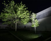 LED Area Light - 160W (500W HID Equivalent) - 5000K/3000K - 20,000 Lumens: Shown Illuminating Garden Tree.