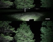 100W LED Area Light - Natural White - 12,500 Lumens: Shown Illuminating Trees In 100w (Top) And 150W (Bottom).