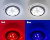G4 LED Bulb - Dual Color - Bi-Pin LED Disc - 122 Lumens: Close Up of Bulb Turned On Showing LED Illumination