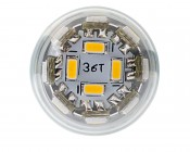 G8 LED Bulb, 36 High Power LEDs: Front View of Bulb