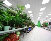 72W LED Panel Light Fixture - 4ft x 2ft: Shown Installed In Garden Center Store In Cool White.
