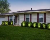 8W LED Landscape Spotlight - Cool White: Shinning on Bushes