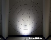 3 Watt LED Landscape Spot Light: Cool, Natural, & Warm White Compared On Target From 2 Feet Away
