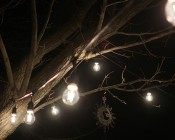 Outdoor LED Decorative String Lights - 10 Pendant Sockets - Fits E26 Bulbs: Installed on Back Patio