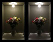 A19 LED Globe Bulb - 10 Watt - Dimmable: Comparision Of On Shots (Warm White Vs Natural White)