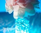 LED accent light used to illuminate flower vase