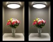 """LED Flush Mount Ceiling Light - 14"""" Round 25W LED Flush Mount Ceiling Fixture: View Of Ceiling Light ON (Warm White On Left, Natural White On Right)"""