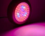 LED Grow Light - 84W Rectangular Panel Plant Grow Lamp