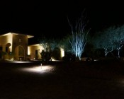 Trees illuminated with cool white bulbs. House surface illuminated with warm white bulbs.Product Page
