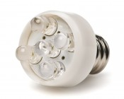 LED Night Light Bulb
