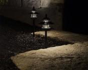 LED Landscape Path Lights - Dual Tier - 2 Watt: Showing Lights Installed In Garden- Natural White