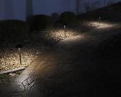 Landscape LED Path Lights w/ Hammered Shade - 3 Watt - Adjustable Height: Installed on Landscape Path