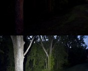 Tree on left is approx 40ft from beacon, light is penatrating approx 100ft into woods