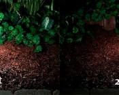 LED Landscape Path Lights - Single Tier - 2 Watt - Aluminum Housing: Showing 4 Watt Versus 2 Watt Version.