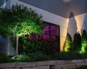 1W LED Landscape Spotlight - White: Installed in Commercial Business Landscape