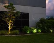 G-LUX series 1 Watt LED Flood Light - Plug and Play