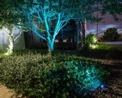 G-LUX series Color Changing RGB LED Spot Light: Installed Below Front Tree