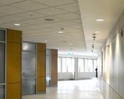 PAR38 LED Bulb - 18W Dimmable LED Flood Light Bulb: Installed In Office Hallway