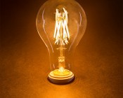 LED Vintage Light Bulb - A25 LED Globe Bulb w/ Filament LED - 5W Dimmable: Turned On