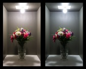 6 Watt A19 Weatherproof Globe Bulb IP65: On Showing Warm White (Left) And Cool White (Right) Bulbs.