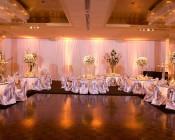 BR20D-x6-120 - R20 LED Bulb - 6 Watt - Dimmable LED Flood Light Bulb: Installed in Wedding Banquet Hall