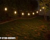 LED Patio String Lights w/ 10 LED Filament or Firework Bulbs - Pendant Sockets - 21': LS10P-ST18D-UW6DFS