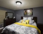 "15"" Oil Rubbed Bronze Housing Dimmable LED Flush Mount Ceiling Light: Installed In Master Bedroom"