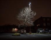 LED Parking Lot Light - 150W LED Shoebox Area Light: Shown Illuminating Parking Lot.