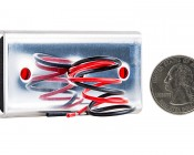 """LED Golf Cart Side Clearance Lights - 2-1/2"""": Back View With Size Comparison"""