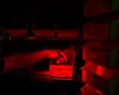 NEBO 90 Lumen Headlamp - Hands-Free LED Flashlight: Shown On Illuminating Landscape.