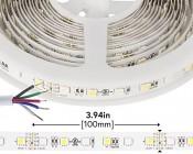 RGBW LED Strip Lights - 12V LED Tape Light w/ White and Multicolor LEDs - 265 Lumens/ft.