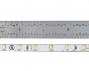 LED Strip Lights - 24V LED Tape Light with LC2 Connector - 145 Lumens/ft.: Showing Ruler Measurments