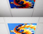 Even-Glow LED Panel Light - Balloon 1 LUXART Print - Dimmable - 2' x 2': Turned Off and Turned On in Ceiling. Similar Print for Imagery.