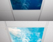 LED Skylight w/ Lone Shark Skylens® - 2x2 - Dimmable - Flush Mount/Drop Ceiling Recessed Mount: Turned Off and Turned On in Ceiling. 2 x 2 Version, Similar Print for Imagery.