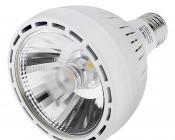 PAR30 LED Bulb, 30W