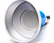 PAR30 LED Bulb, Weatherproof
