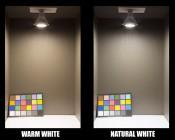 PAR38 LED Bulb - 150 Watt Equivalent LED Flood Light Bulb: Showing Color Temperature and Light Output