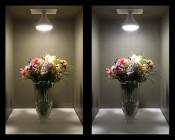 BR40 LED Bulb - 18 Watt - Dimmable LED Flood Light Bulb: Comparison Of On Shots (Warm White Vs Natural White)