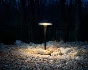 Landscape LED Path Lights w/ Mushroom Shade - 3 Watt - Adjustable Height: Shown Installed In Rock Garden.