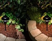 LED Landscape Path Lights - Dual Tier - 2 Watt: Comparison Between Natural White (left) & Warm White (right)