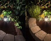 LED Landscape Path Lights - Mini Bollard - 4 Watt: Comparison Between Natural White (left) & Warm White (right)